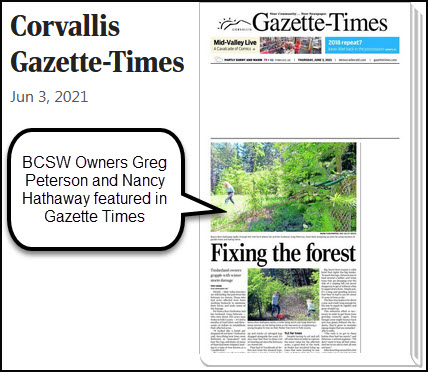 GT Front Page -Fixing Forest